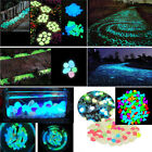 100x Glow in The Dark Stones Pebbles Rock FISH TANK AQUARIUM Garden Road Decor