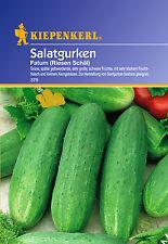 Kiepenkerl - Salatgurken 375 * Fatum (Riesen Schäl) * Gurkensamen Senfgurke