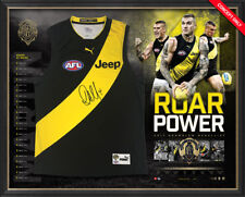 DUSTIN DUSTY MARTIN LTD ED AFL APPROVED 2017 BROWNLOW MEDALLIST JERSEY JUMPER