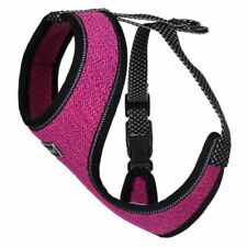 Rukka Pets Star Mini Harness
