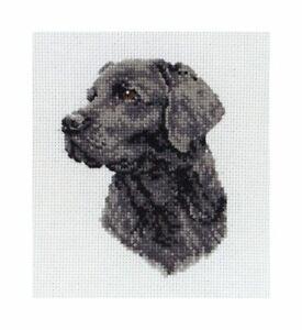 Black Labrador - Anchor Cross Stitch Kit - 11cm x 8cm - PCE218 - Gift