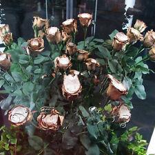 """150 unidades Semillas de Flor Rosa de Oro """"Golden Rose"""" crecimiento natural de decoración del hogar"""