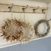 Shell Wreath Bathroon Wall Door Decoration Nautical Winkle Grey Gisela Graham