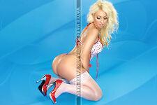 184 SEXY ART DECAL STICKER PIN UP GIRL HOT BLONDE SEXY LEGS BIG BUTT ROUND ASS