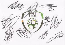 REPUBLIC OF IRELAND EURO 2016 SIGNED A4 (12x8) BADGE WHITECARDx10+COA *McGEADY*