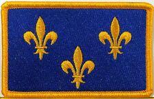 PARIS Île-de-France Flag Iron-On Patch  Isle of France Emblem Gold Border