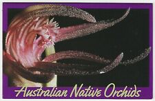 1986 STAMP PACK 'AUSTRALIAN NATIVE ORCHIDS' - GREAT CONDITION