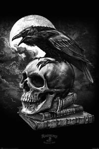 (244) NEW MAXI POSTER ALCHEMY POE'S RAVEN SKULL AT NIGHT EDGAR ALAN BIRD GOTHIC