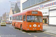 London Transport SM317 Colindale 1980 Bus Photo