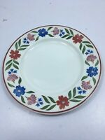 Salad Plate Country Craft by JOHNSON BROTHERS 7 3/4 in DWasher/freezer/MW safe