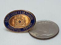 Masons Grand Lodge F. & A. M.O Florida Perpetual Member Pin Plastic Clutch Back