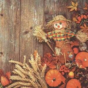 20 Servietten, Lustige Vogelscheuche und Erntegaben, Herbstszene 33x33 cm