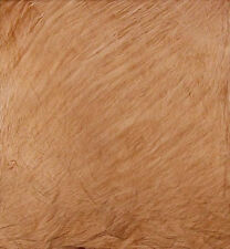 Photographic Background 6 x 9ft Brown Textured Sandwash Muslin