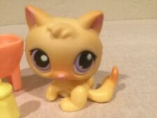 Littlest Pet Shop Lot #248 Yellow Orange Baby Kitten Cat Purple Eyes + Bottle +