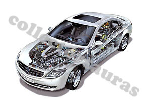 2007 Mercedes-Benz CL 600 AMG Sports car - Cutaway View - A4 size Print ONLY