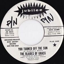 Rock Promo Alternative/Indie 45 RPM Speed Vinyl Records