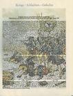 Mollwitz 1741 - Kriege - Schlachten - Gefechte