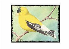 American Jilguero Vintage Placa de pared jaula pájaro imagen Sluis aviario signo