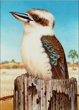 """Counted Cross Stitch Kit """"Kookaburra"""" by Andrea's Designs"""