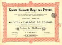 Societe Nationale Belge des Petroles SA, accion de dividendos, 1924