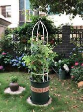 1.5m Outdoor Garden Metal Trellis Climbing Plant Support Frame Ivy Vine Roses