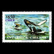 Chile 2000 - Antarctica Fish Wales Fauna - Sc 1341 MNH