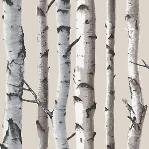 Fine Decor Birch Trees Cream & Silver Metallic Wallpaper FD31051