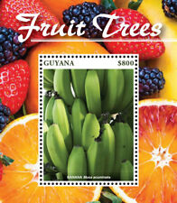 Guyana 2015 - Fruit Trees - Banana - Stamp Souvenir Sheet MNH