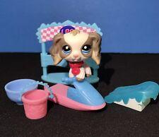 Littlest Pet Shop 2254 Cocker Spaniel White Grey Puppy Dog Blue Eyes accessories