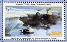 CANADA 2002 DUCK STAMP MINT IN FOLDER AS ISSUED KING EIDER by Pierre LeDuc