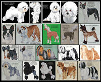 COMPANION DOG BREEDS COUNTED CROSS STITCH PATTERNS