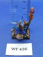 Warhammer Fantasy - Chaos - Sorcerer of Chaos Pro Painted - Metal WF426