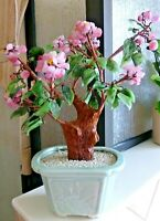 VTG Asian Bonsai Tree Jade/Quartz Glass Cherry Blossom Clusters Ceramic Planter
