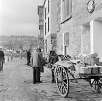 Horse And Cart In St Ives Cornwall 1954 OLD PHOTO 1
