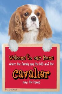 Blenheim Cavalier Welcome to our Home sign CAVALIERS run the house funny signs