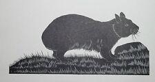 MARSUPIAL WOMBAT : B&W Art Deco Wild Animal Print of a 1920s Wood-cut By DAGLISH