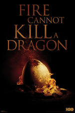 TELEVISION POSTER Game of Thrones Fire Cannot Kill A Dragon