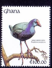 Ghana 1991 MNH, Water Birds, King Reed Hen