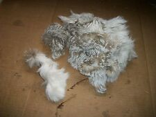 LOT tanned WILD JACK RABBIT scrap pieces fur pelt skin FLY TYING smaller craft