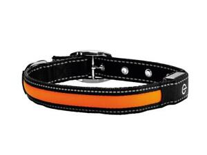 Zoofari Dog Collar LED Light Up W/Rechargeable Battery Micro USB Safety Large