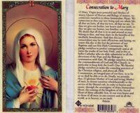 Consecration to Mary Prayer Card Most Holy Mother Catholic Laminated HC9-002E