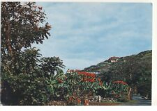 Old Postcard (1968) - Tenerife - Bajamar Road - Posted 0365