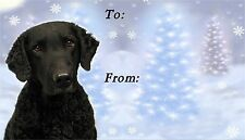 Curly Coated Retriever Christmas Labels-Starprint No 1