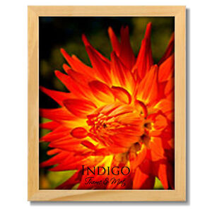 One Natural Light Wood 11x14 Picture Frame, Clear Glass