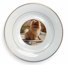 Pomeranian Dog 'Love You Mum' Gold Rim Plate in Gift Box Christmas, AD-PO89lymPL