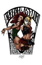 "Poison Ivy and Harley Quinn ""Arkham Asylum"" Art Print by Huffychip"