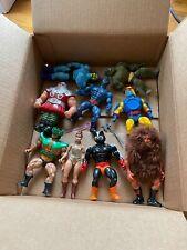 He-Man Masters Of The Universe Action Figure Lot MOTU He Man Skeletor yard sale