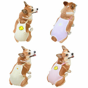 Female Pet Dog Physiological Sanitary Briefs Menstrual Pants Puppy Diaper Pants