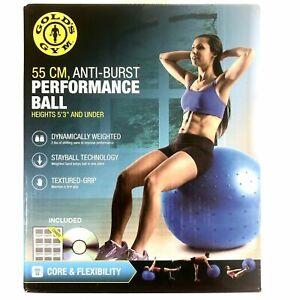 Golds Gym Durable Anti-Burst 55cm Fitness Stayball Training Ball New W/DVD Blue