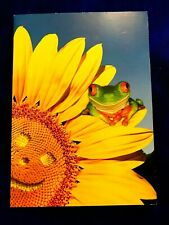 Note Card Greeting Card (Blank Inside) Avanti Greetings